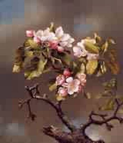 Branch of Apple Blossoms against a Cloudy Sky 1867jpeg